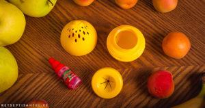 Äädikakärbestest Retseptisahtel