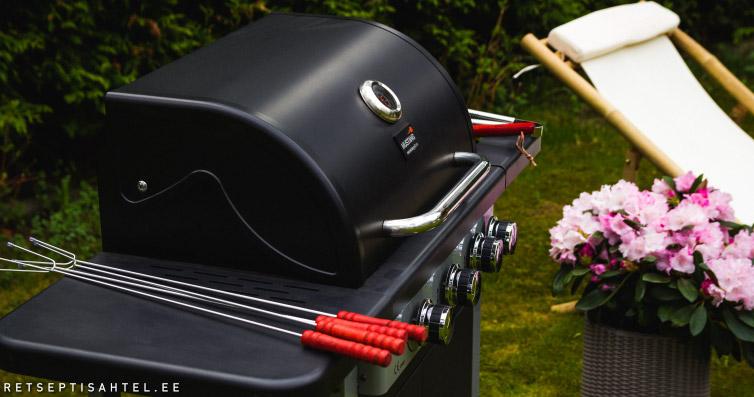 2bd691ef8e0 Milline grill osta? Söe- ja gaasigrillide võrdlus - Retseptisahtel